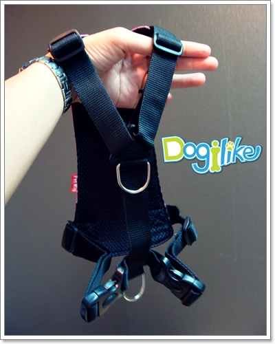 Dogilike.com :: REVIEW : ����Ѵ����������Ѻ�عѢ