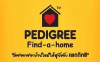 Pedigree Find-a-home �����عѢ�ء��Ǥ���պ�ҹ���ͺ���