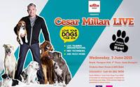 ��ի��� ����ҹ� ��������ʴ�����á��¡Ѻ Vetz Petz Antinol Presents Cesar Millan LIVE � Love Your Dogs Tour