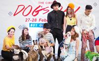 Dogilike ������� The Circle Dogs Day @���������� �Ҫ�ġ��