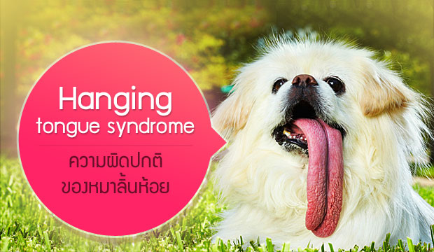 Hanging tongue syndrome �����Դ���Ԣͧ����������