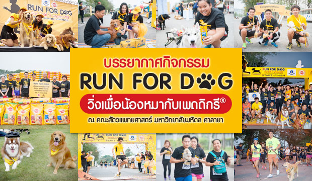 ����ҡ�ȡԨ���� Run For Dog ������͹�ͧ���