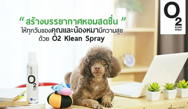 ���ҧ����ҡ�����ʴ������س��й�ͧ��� ���� O2 KLEAN SPRAY