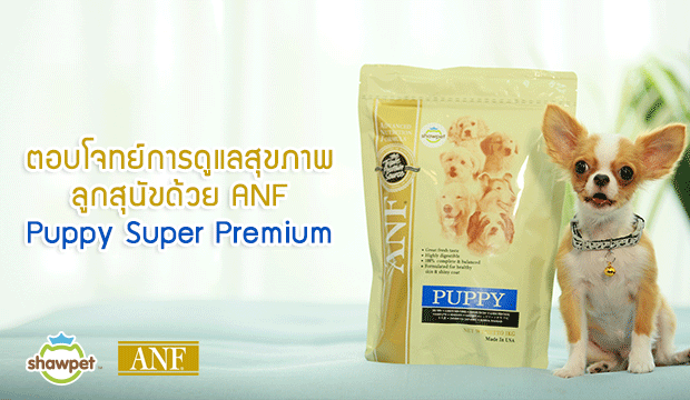�ͺ⨷���ô����آ�Ҿ�١�عѢ���� ANF Puppy Super Premium