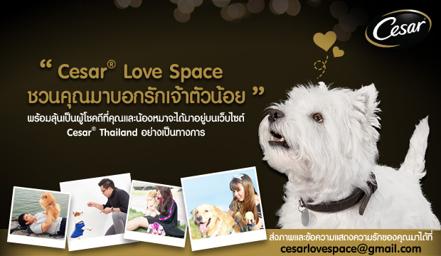 Cesar Love Space �ǹ�س�Һ͡�ѡ��ҵ�ǹ���