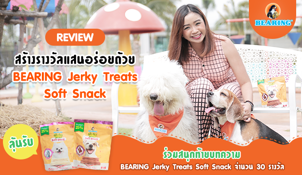 Review ���ҧ�ҧ����ʹ����´��� BEARING Jerky Treat Soft Snack