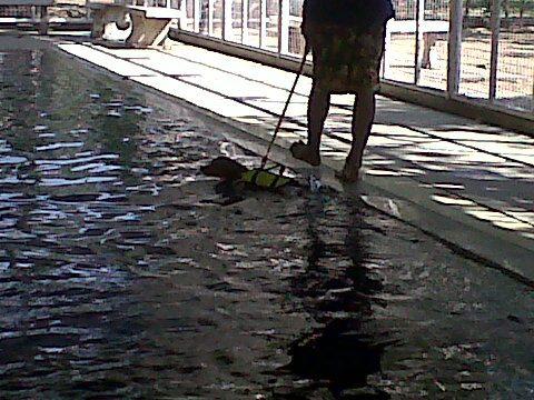 ว่ายน้ำ เก๊กสาวๆก่อนน๊ะคับ!