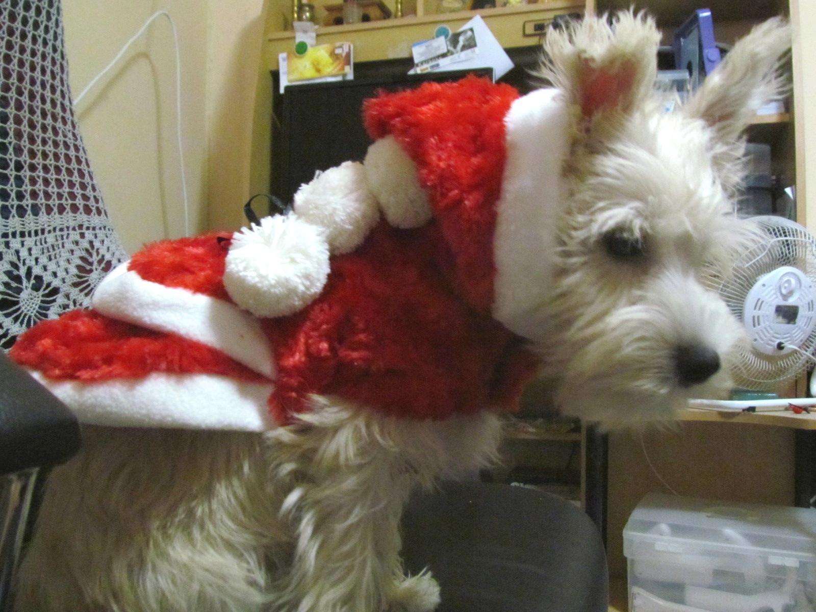 ลองชุดซานตี้ ไว้ใส่ไปงาน Christmas กับคุณแม่