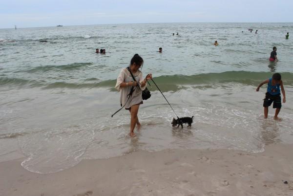 ไปเที่ยวทะเลกันได้เล่นน้ำกับพี่ ๆ กับมะมี้ด้วย