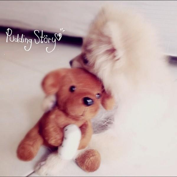 best friend :]