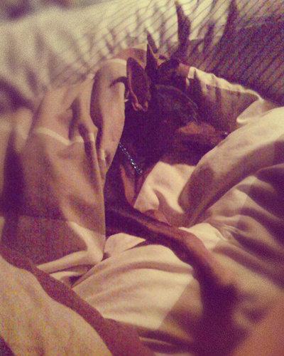 ทำไมพับบี้ชอบนอนกินที่ -.-