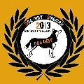 Dog Indy
