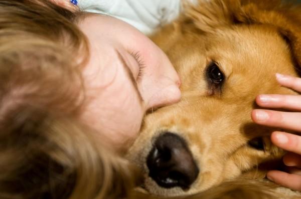 ผลโพลชี้! คนเลี้ยงหมาเกินครึ่งคอนเฟิร์มว่า อยู่กับหมาดีกว่าอยู่กับคน (บางคน)  | Dogilike Board