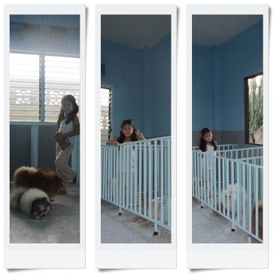 ห้องพักน้องๆ @ Ban LomNhua
