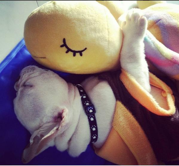 กอดพี่ตุ๊กติ๊ก หลับสบายเยย ^^