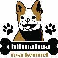 chihuahua iwa kennel