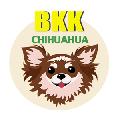 บีเคเค ชิวาวา