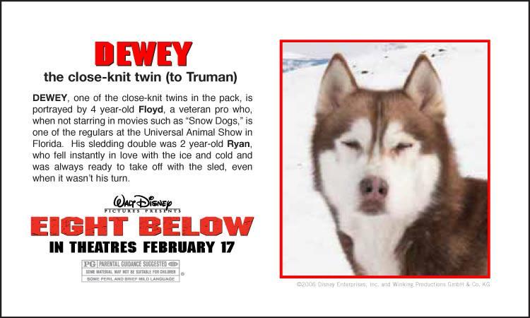 Dog Name Dewey