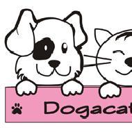 รูปของ dogacat