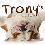 รูปของ trony
