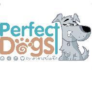 รูปของ perfectdogs