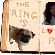 Ring4dog
