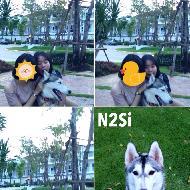 รูปของ N2Si