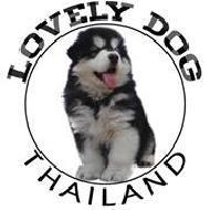 รูปของ LOVELYDOG THAILAND