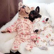 รูปของ French Pierre & Je T'aime