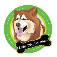 smile dog chonburi