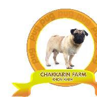 รูปของ chakkarin