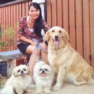 Dog4love