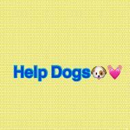 รูปของ helpdog