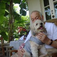 รูปของ ilovemydog