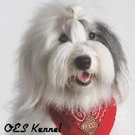 รูปของ OES Kennel