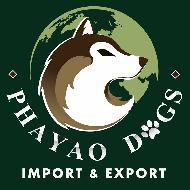 รูปของ Phayaodogs Import