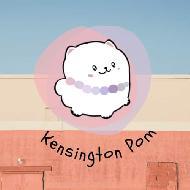 รูปของ kensingtonpom