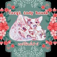 รูปของ Corgi indy housre