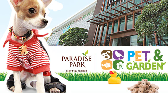 ����䴫� ���� , Paradise Park , ��ҧ��þ�Թ��� , �عѢ , ��ͧ��� , ��ͻ��� , �ѵ������§ , �Ԩ����