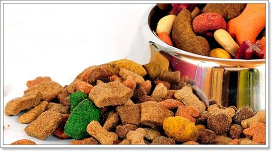 Dogilike.com :: อาหารสุนัขแต่ละเกรดต่างกันอย่างไร?