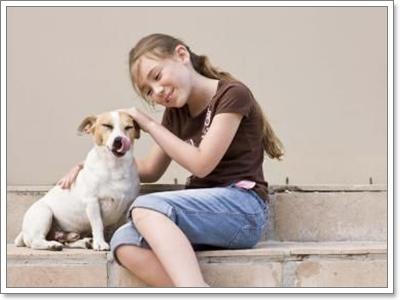 Dogilike.com :: 5 ปัญหาสุขภาพและการดูแลน้องหมาที่พบบ่อยที่สุดในปี 2012