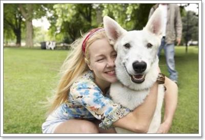 Dogilike.com :: กฎเหล็ก 3 ข้อ ที่จะทำให้การฝึกน้องหมามีประสิทธิภาพ