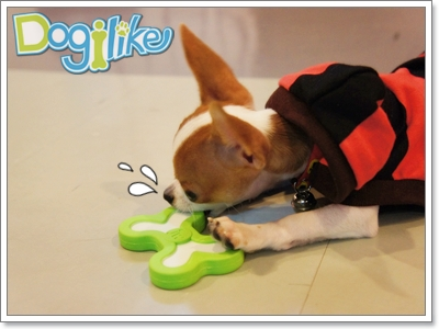 Dogilike.com :: REVIEW : ของเล่นยางรูปกระดูกกลิ่นมิ้นท์