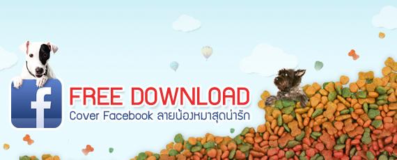 Dogilike.com :: แจกฟรี !! Cover Facebook By Dogilike