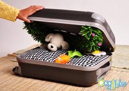 Dogilike.com :: ที่นอนพกพา...ฉบับ โฮ่ง โฮ่ง!!