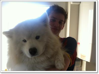 Dogilike.com :: รวมฮิต น้องหมาซุปตาร์ กับความเป็นสุดยอดแห่งปี 2012