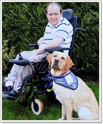 Dogilike.com :: ทิลลี่ ยอดสุนัขผู้เปลี่ยนชีวิตเจ้าของพิการ