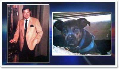 Dogilike.com :: ฮือฮา! เจ้าของตายทิ้งมรดกให้สุนัขอื้อ