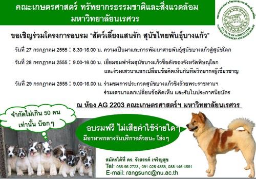 Dogilike.com :: ม.นเรศวร จัดโครงการอบรม  สัตว์เลี้ยงแสนรัก สุนัขไทยพันธุ์บางแก้ว
