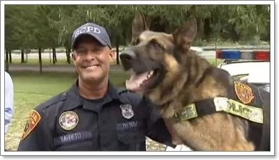 Dogilike.com :: ฮีโร! สุนัขตำรวจดมกลิ่นตามหาคุณพ่อสลบกลางป่า